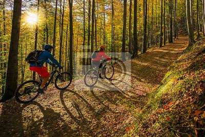 Plakat Kolarstwo górskie w jesień krajobrazowym lesie.