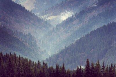 Plakat Krajobraz gór górskich lasów.