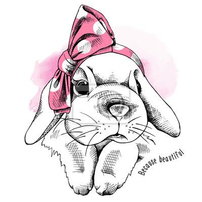 Króliczek w różowej opasce. Ilustracji wektorowych.