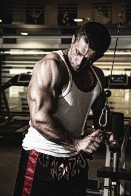 Plakat Kulturysta trenuje mięśnie w siłowni