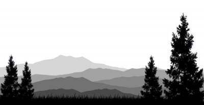Plakat lasy iglaste do projektowania