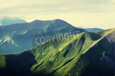 Plakat Lato zielone wzgórza