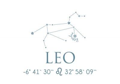 Plakat LEO LEO