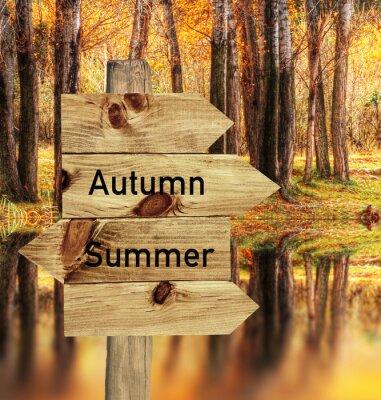 Plakat Llego el otoño