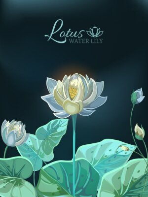 Plakat Lotus flower with green leaves close-up in hand drawn style