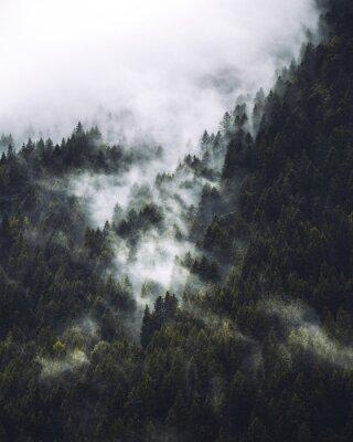 Plakat mgła