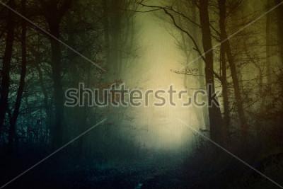 Plakat Mistyczna tapeta z ciemnego lasu