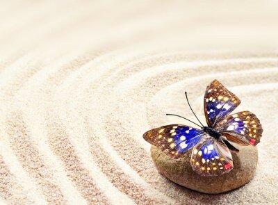 Plakat Motyl na piasku