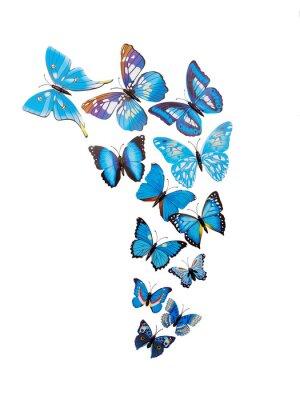 Plakat Motyle naklejki ścienne