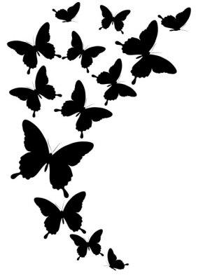 Plakat motyle projektowania