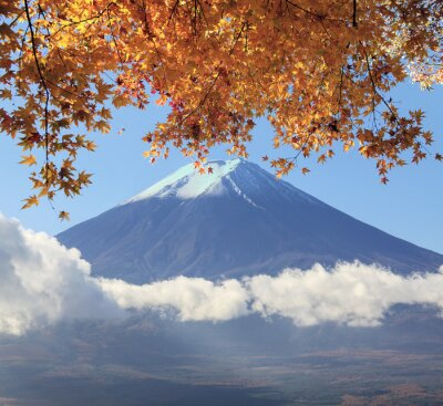 Plakat Mt. Fuji with fall colors in Japan