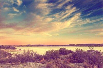 Plakat Naturaleza, paisaje en estilo retro. Lago y vegetacion pl efecto rocznika.