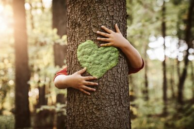 Plakat Nature lover, close up of child hands hugging tree with copy space