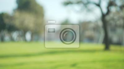 Plakat Nieostry tle płyty pola trawy w pięknym parku na przedmieściach