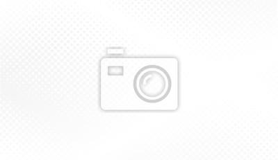 Plakat Nowoczesne półtonów białe i szare tło. Koncepcja projektowania dekoracji dla układu internetowego, plakat, baner