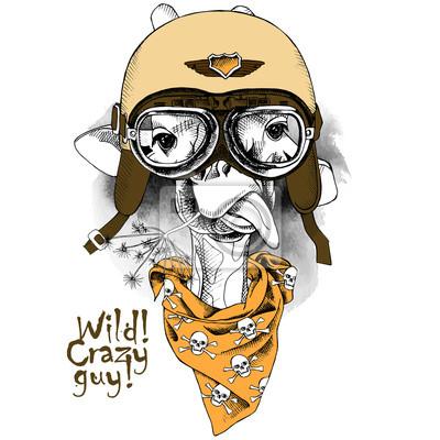 Obraz Portret żyrafa noszenie kasku i apaszkę z obrazami czaszką. ilustracji wektorowych.