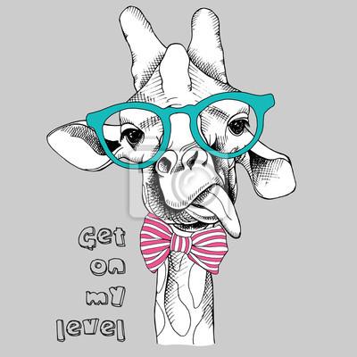 Obraz Portret żyrafa w okularach. ilustracji wektorowych.
