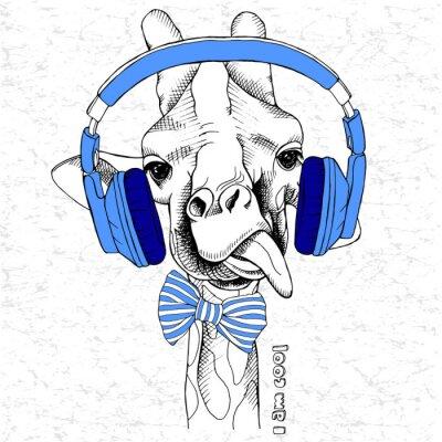Obraz portret żyrafa w słuchawkach i dziobu. ilustracji wektorowych.