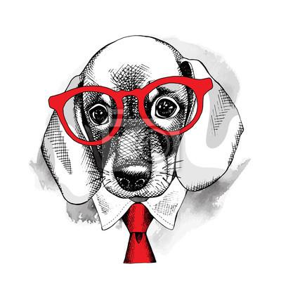 Obraz z portretem pies jamnik w okularach iz krawatem. ilustracji wektorowych.