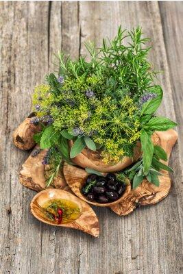 Plakat Oliwki z oliwek, bazylia, koper, szałwia, lawenda, mięta. Zioła i przyprawy