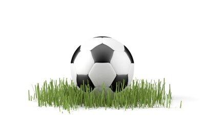 Plakat Palla da calcio su Erba