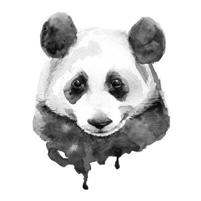 Plakat Panda.Black i bieli. Odosobniony