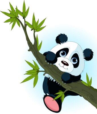 Plakat Panda Giant wspinaczki drzewo