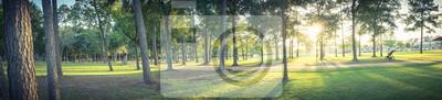 Plakat Panoramiczny widok na park miejski w Teksasie, w Stanach Zjednoczonych z trawą trawą zieloną, ogromnymi sosnami i trasą spacerową / biegnącą podczas zachodu słońca. Skład charakteru panoramicznego. Pa