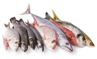 Plakat Pescato Mediterraneo w Fondo bianco