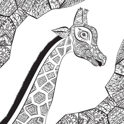 Plakat Piękne dorosłych Żyrafa. Ręcznie rysowane ilustracji ozdobnych żyrafy. żyrafa na białym tle. Szef ozdobna żyrafa