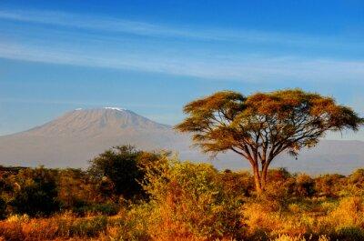 Plakat Piękne górskie Kilimandżaro po wschodzie słońca w godzinach porannych, Kenia, Park Narodowy Amboseli, Afryki