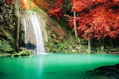 Plakat Piękne wodospad w lesie jesienią