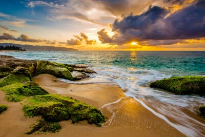 Plakat Piękny Hawaiian Sunset
