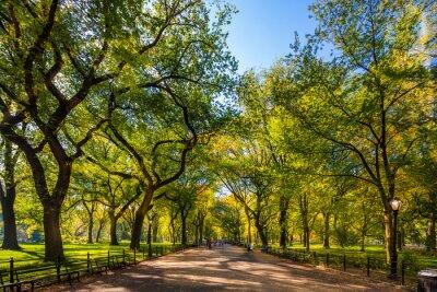Plakat Piękny park w pięknym mieście .. Central Park. Centrum handlowe w Central Park jesienią., Nowy Jork, USA