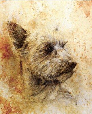 Plakat Pies rysunek ołówkiem na starym papierze, papierze rocznika i starej struktury z kolorowych plam.