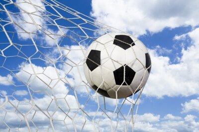 Plakat Piłka w cel netto