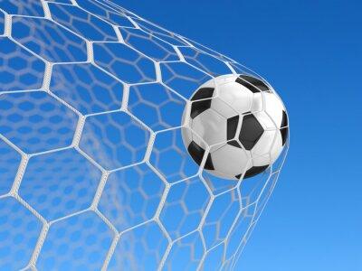 Plakat Piłka w sieci