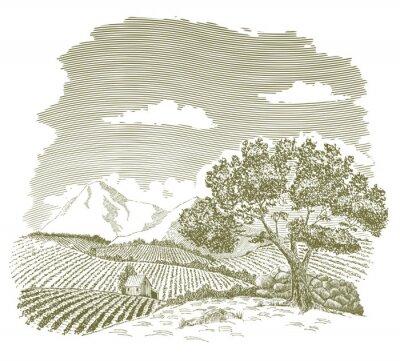 Plakat Pióro i atrament rysunek dziedzinie hodowli z górami w tle.