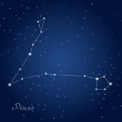 Plakat Pisces constellation zodiac sign at starry night sky
