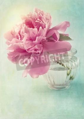 Plakat Piwonia kwiat w wazonie