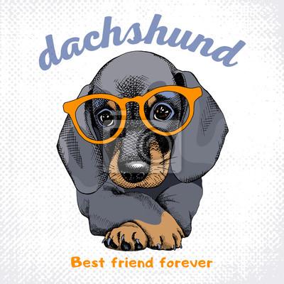 Plakat z portretem pies jamnik w okularach. ilustracji wektorowych