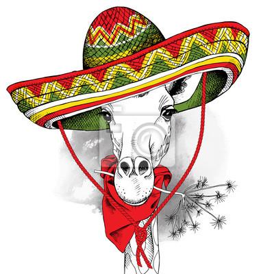 Plakat z wizerunkiem żyrafa w sombrero Meksyku. ilustracji wektorowych.
