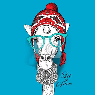 Plakat z wizerunkiem żyrafy w Chullo długo dzianiny kapelusz i szalik w dzianiny. ilustracji wektorowych.