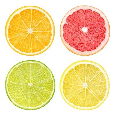 Plakat Plasterki owoców cytrusowych samodzielnie na białym tle