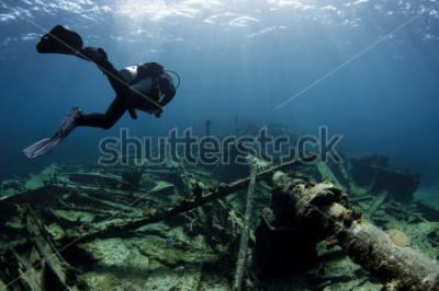 Plakat Płetwonurek pływający nad wrakiem statku