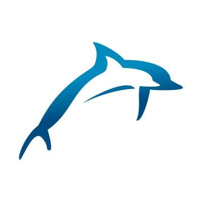 Plakat Podwójne Delfiny