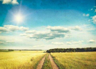 Plakat Pole pszenicy złote i błękitne niebo