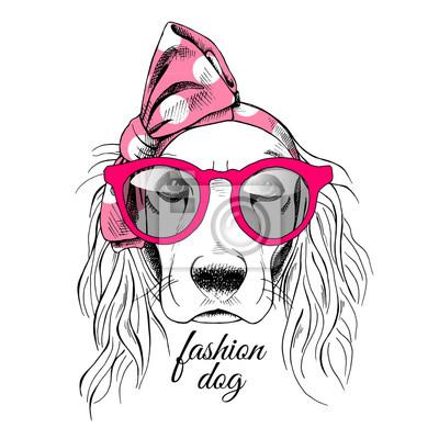 Portret Fold pies w różowym pałąk z okulary. ilustracji wektorowych.