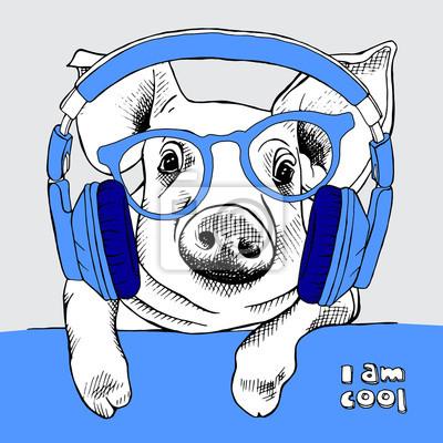 Portret świni Obraz z okulary i słuchawki. ilustracji wektorowych.
