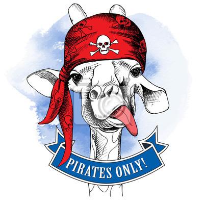 Portret żyrafa sobie bandana pirata z wizerunkiem czaszki. ilustracji wektorowych.